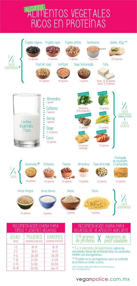 Algunos alimentos vegetales ricos en prote nas - Alimentos vegetales ricos en proteinas ...