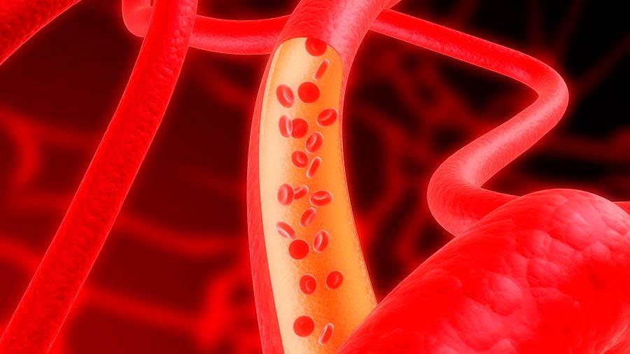 Común que mexicanos rebasen topes de azúcar en glóbulos rojos, con riesgo inherente a distintos órganos