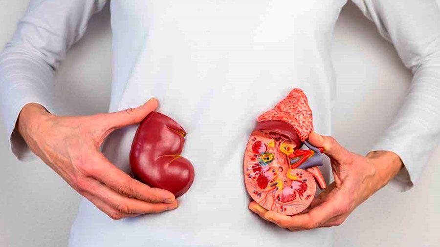 viviendo con un riñón con diabetes