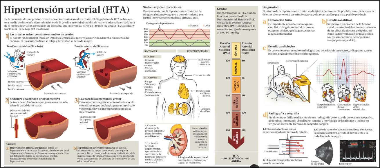 Hipertensión arterial (HTA)